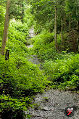waterfall by dantada