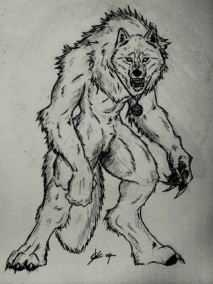 L 39 uomo dei lupi for Disegni di lupi facili
