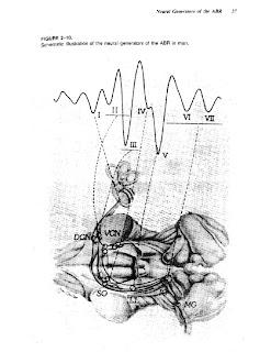 jack katz handbook of clinical audiology