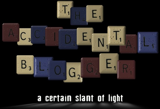 The Accidental Blogger