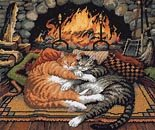 The fireside cat