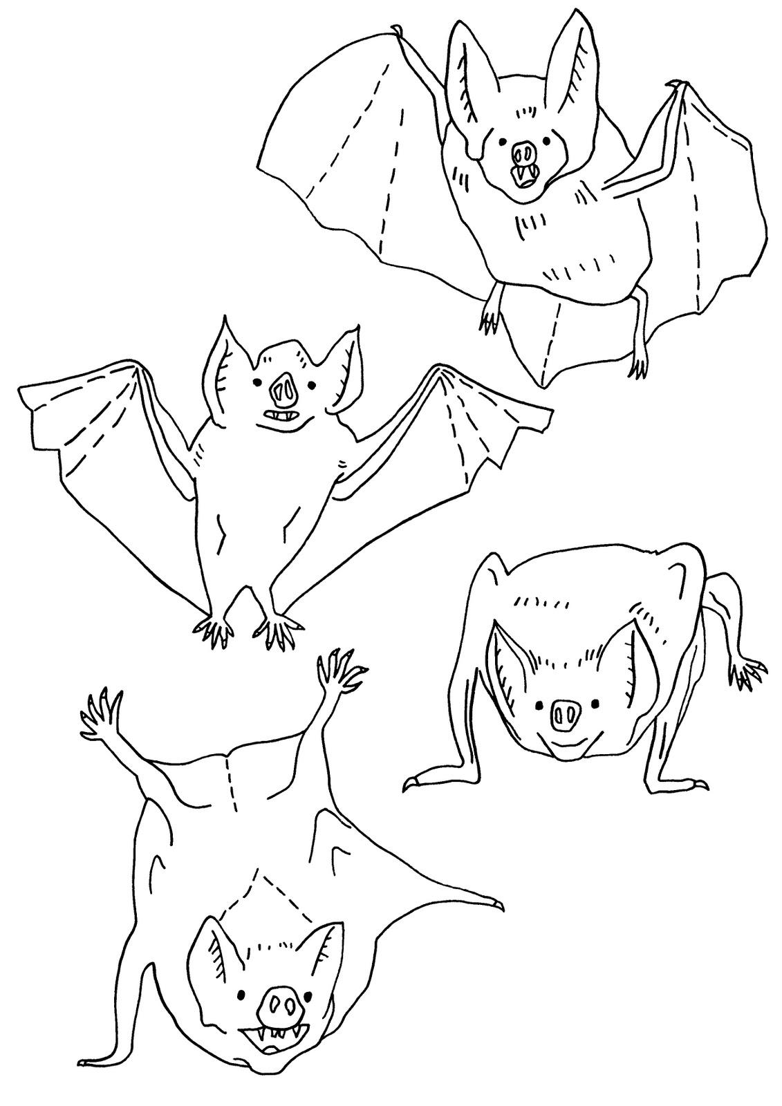 http://1.bp.blogspot.com/_HHROpjYmAwI/TRHdAkAEXDI/AAAAAAAAAYQ/o_mhBSL4QFQ/s1600/bats+by+helen.JPG