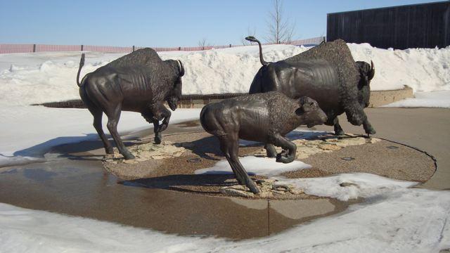 [buffalo+statue]