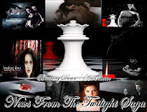 News From the Twilight Saga