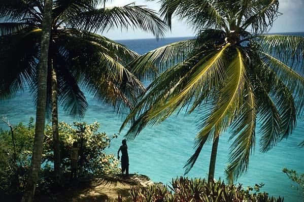 [jamaica.jpg]