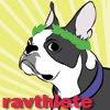 2008 Summer Ravelympics