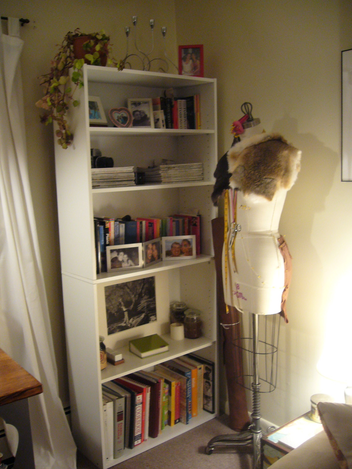 Temporary Nest: A Fight with a Bookcase.