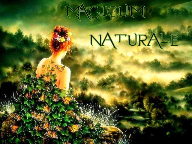 Magicum Naturale