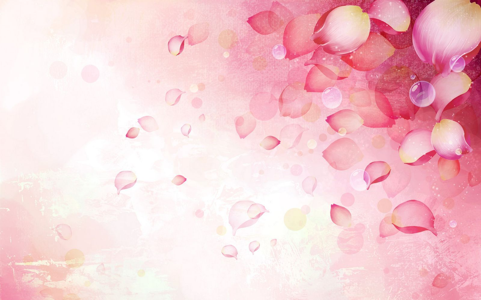 Romantic Love Letter » A Romantic Love Letter With Rose Petals