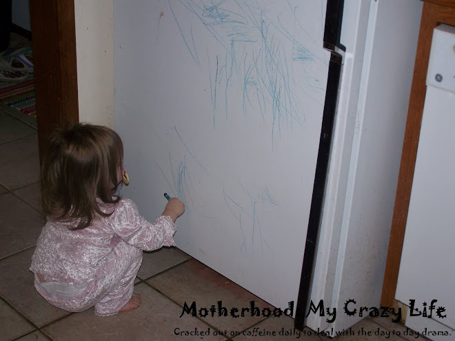 Motherhood: My Crazy Life
