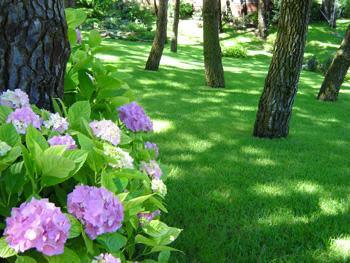 jardines zona norte