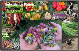 Subsistence Pattern