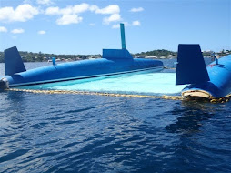 The capsized Anna