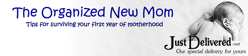 The Organized New Mom