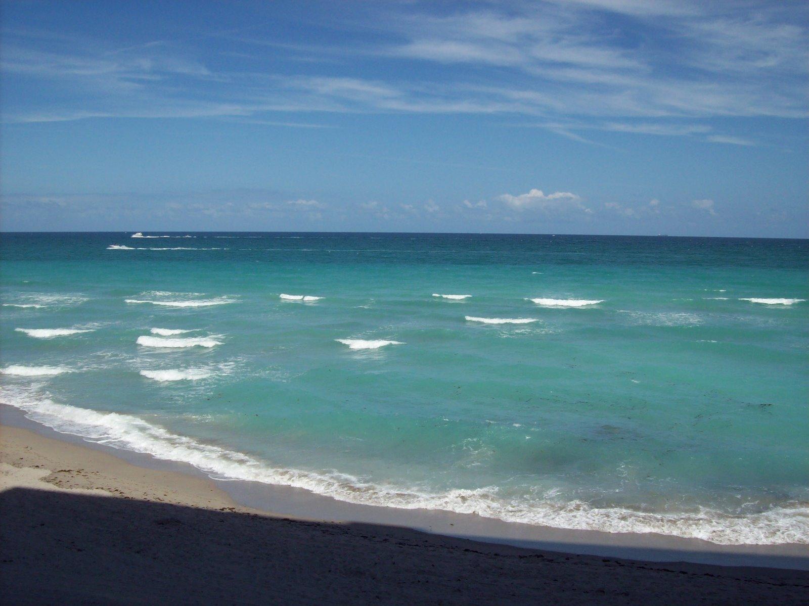 [beach+condo+007.jpg]