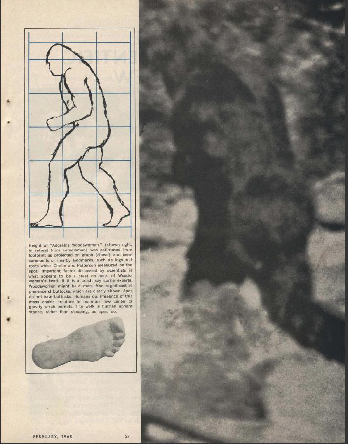 ARGOSY+MAGAZINE+February+1968+7.jpg