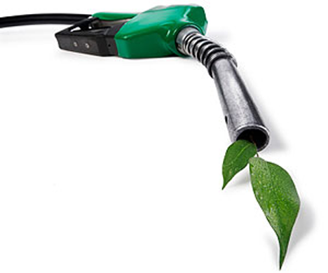 alternate fuel Alternative fuels council providing expert knowledge on alternative fuel management and regulatory compliance we assist fuel marketers with federal and state.