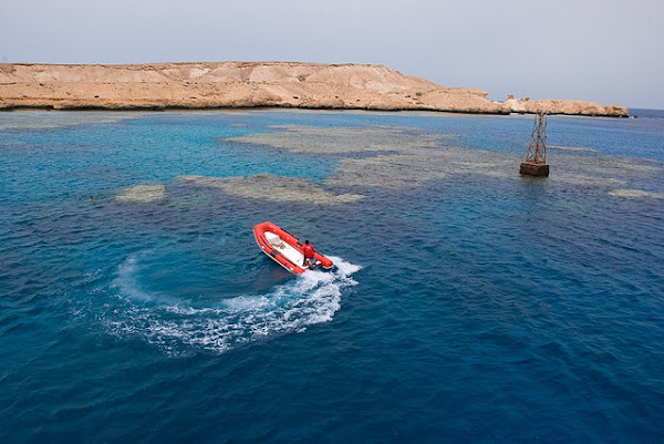 Red Sea reef can be seen even in shallow water