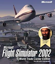Flight Sim Pics