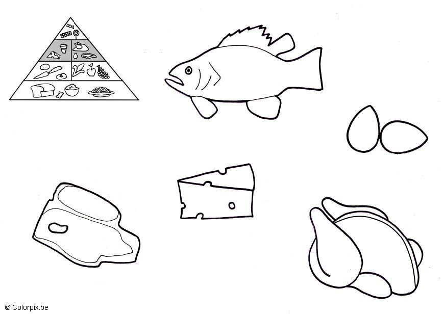 Piramide De Alimentos Para Colorear