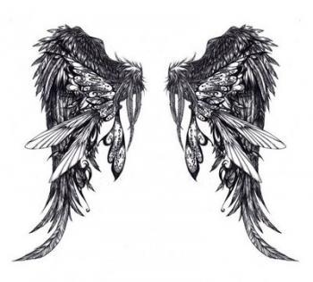 http://1.bp.blogspot.com/_HZfLCT2DIXU/TKV28j3sH5I/AAAAAAAAABg/xEU-YTrzyCc/s1600/Angel-Wing-Tattoo-Design.jpg