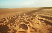 LA MAGIA DEL SAHARA