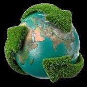 Proteger el medioambiente es cosa de todos.