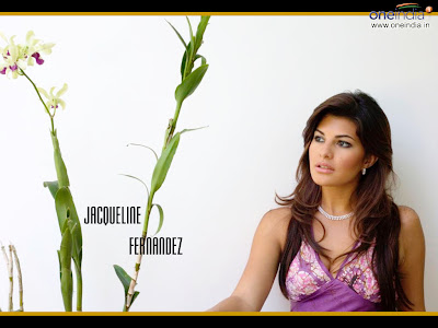 Jacqueline Fernandez wallpaper #7