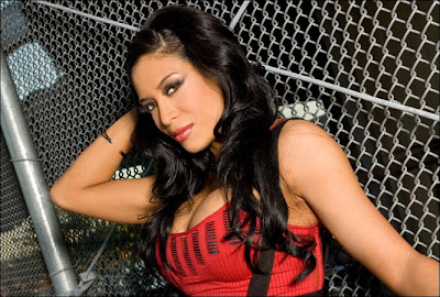 WWE Diva Melina stops the traffic