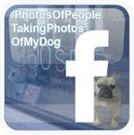 'Photos of People Taking Photos of My Dog' Facebook Fan Page