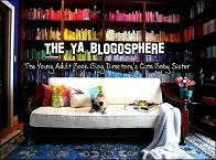 The YA Blogosphere