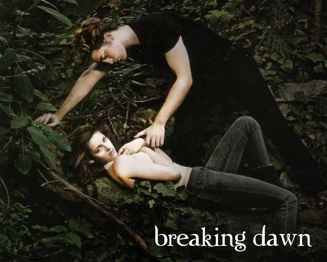 http://1.bp.blogspot.com/_H_wbQtT05C0/TFaRDPaYofI/AAAAAAAAAgY/24dyGgvsP18/s1600/breaking+dawn+scene.jpg