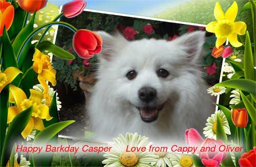 [Casper+D.+Dog+Barkday+]