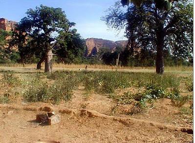 殺人 非洲神秘魔石 - 殺人於無形的非洲神秘魔石