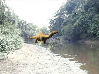 剛果恐龍 1979 - 剛果恐龍 1979年傳出被屠殺