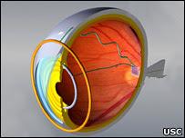 Image of Eye Diagram
