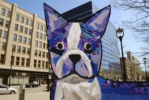 Bosty the Boston Terrier in Milwaukee by collage artist Megan Coyle