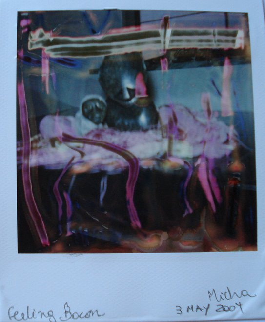 feeling bacon - polaroid manipulation