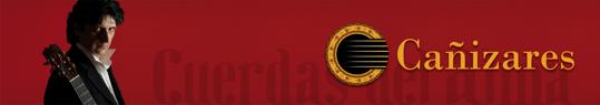 カニサレスのブログ(カニブログ)