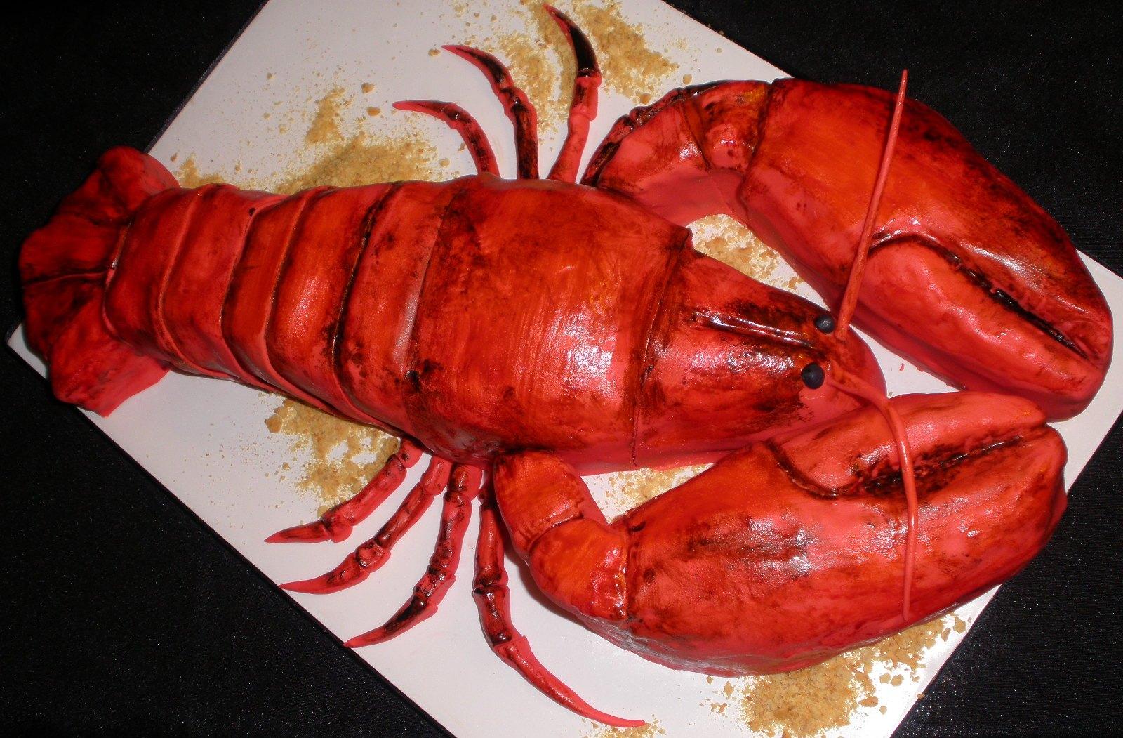 http://1.bp.blogspot.com/_HedvIaGKm1s/SxM5EiitWjI/AAAAAAAAA2g/00xu84jBZW4/s1600/lobster2.JPG