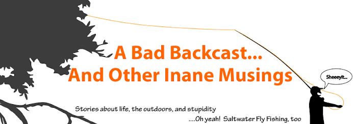 A Bad Backcast And Other Inane Musings