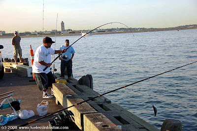 Clueless in boston fishing for Boston harbor fishing report