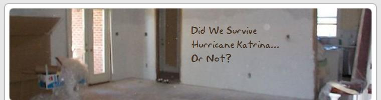 Did We Survive Hurricane Katrina or Not?
