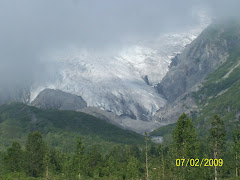 One of the glaciers we saw this July day