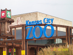 Nice day at the zoo