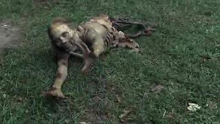 Ходячие мертвецы - инвалид