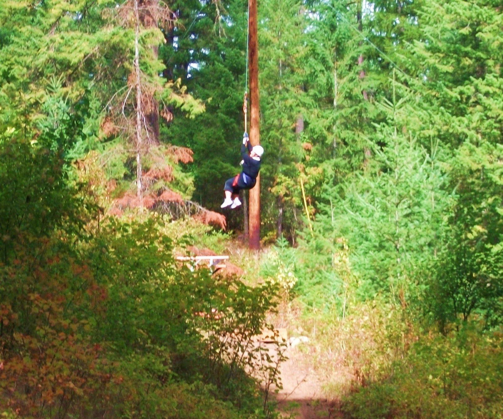Fabulously fit by 40 ropes course and ziplining - Uur pm balances ...