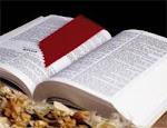 La Bíblia/La Palabra de Dios/Las Escrituras