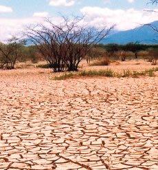 DESERTIFICACION EN QUERETARO