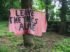 One of many banners made to protest at plans to fell a line of trees next to Blackberry Hill